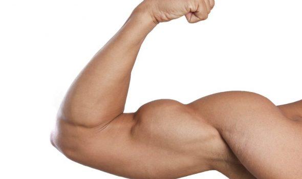 imagen de protesis de biceps renacimiento madrid y marbella estetica corporal